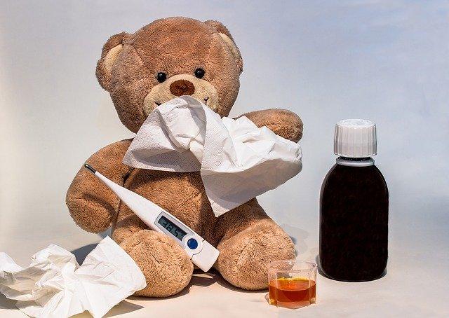 nemocný medvěd.jpg